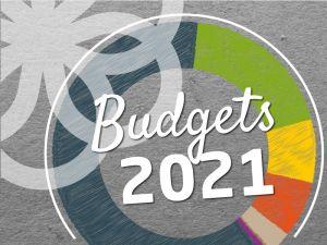 Budgets 2021